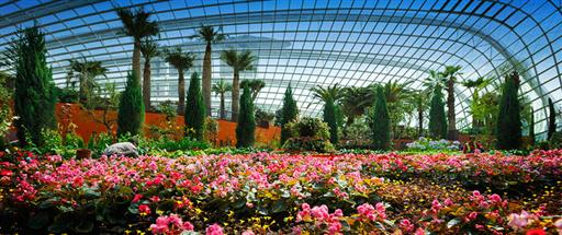 Singapore S Gardens By The Bay Now Open Singapore Travel Tips